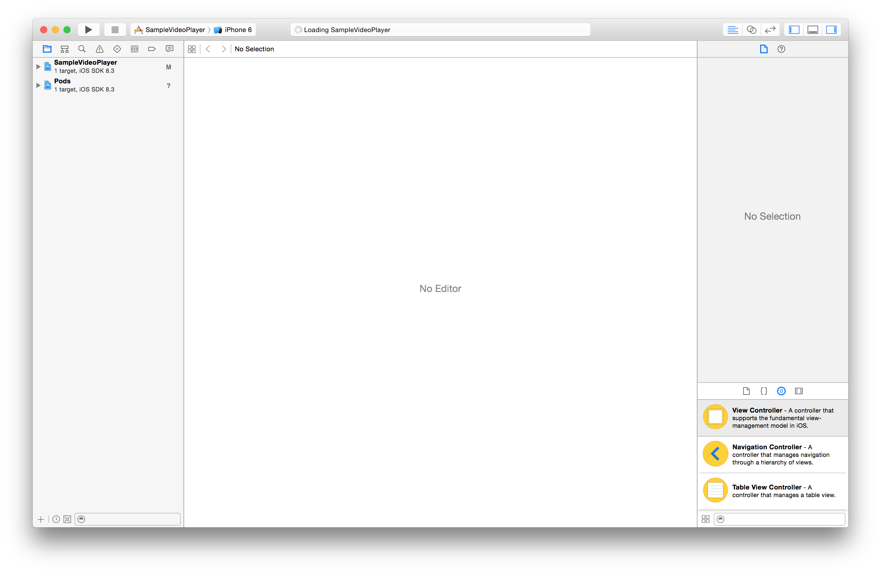 the Xcode workspace