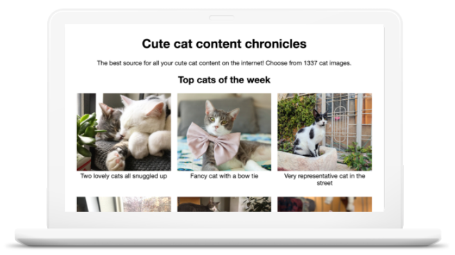 A website that shows 6 different images of cats. The title of the website                   is Cute cat content chronicles.