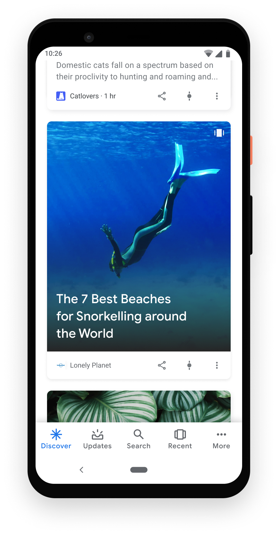 Web Story as a single card in Google Discover